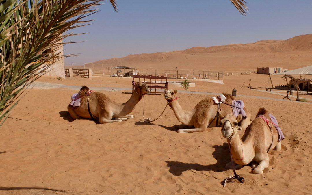 Beduinen in Oman. Ein Leben in zwei verschiedenen Welten.